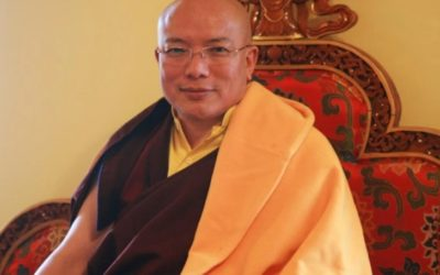 """The 12th Chamgon Kenting Tai Situpa """"Responses to Requests Ⅱ"""""""