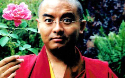 IL VIAGGIO HA INIZIO di Mingyur Rinpoche